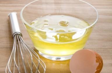 Albume alimento nutritivo ricco di proteine | Kikakitchen